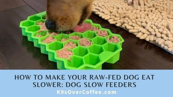 K9sOverCoffee | How to make your raw-fed dog eat slower: dog slow feeders