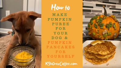 How to make pumpkin puree for your dog and pumpkin pancakes for yourself