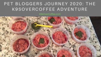 K9sOverCoffee is participating in the Pet Bloggers Journey Blog Hop 2020