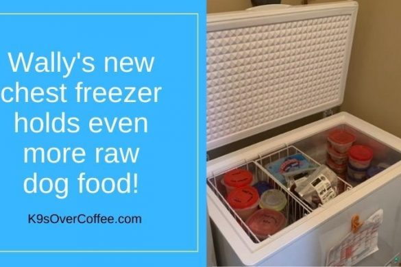 Freezer space makes raw feeding affordable and affects the cost of raw dog food