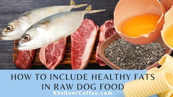 How to include healthy fats in raw dog food