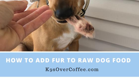 K9sOverCoffee | How to add fur to raw dog food