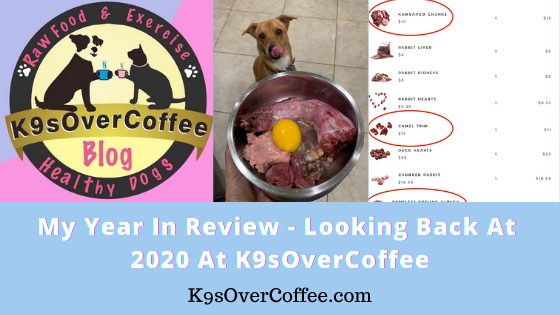 K9sOverCoffee | My Year in Review - Looking Back at 2020 at K9sOverCoffee