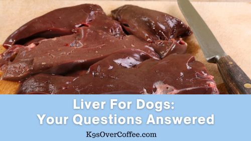 K9sOverCoffee | Liver For Dogs: Your Questions Answered