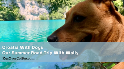 K9sOverCoffee | Crotia with dogs - our summer road trop with Wally
