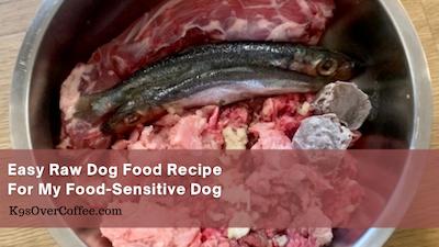 K9sOverCoffee | Esay raw dog food recipe for my food-sensitive dog