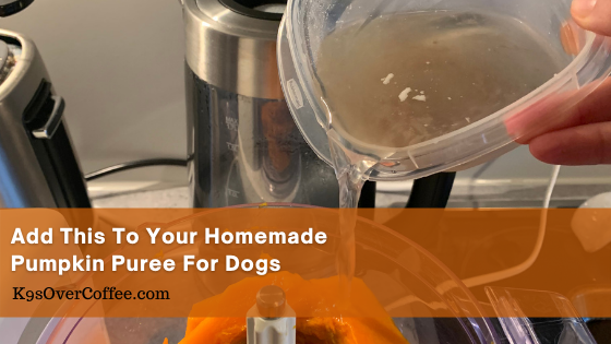 K9sOverCoffee| Add this to your homemade pumpkin puree for dogs
